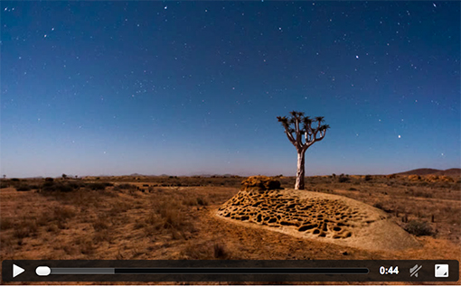 Linear and pan time-lapse of a silhouette quiver tree at sunset with a parallax view