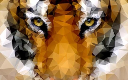 tiger-poly-1