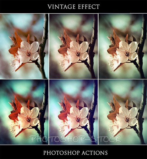 Vintage_13