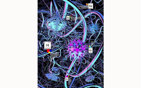 algorithme-auto-immune-1