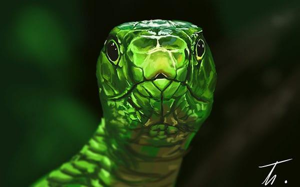 Étude/speepainting de deux heures sur le thème reptile. J'ai choisi d'étudier cette image, car j'adorais les couleurs saturées et la lumière.